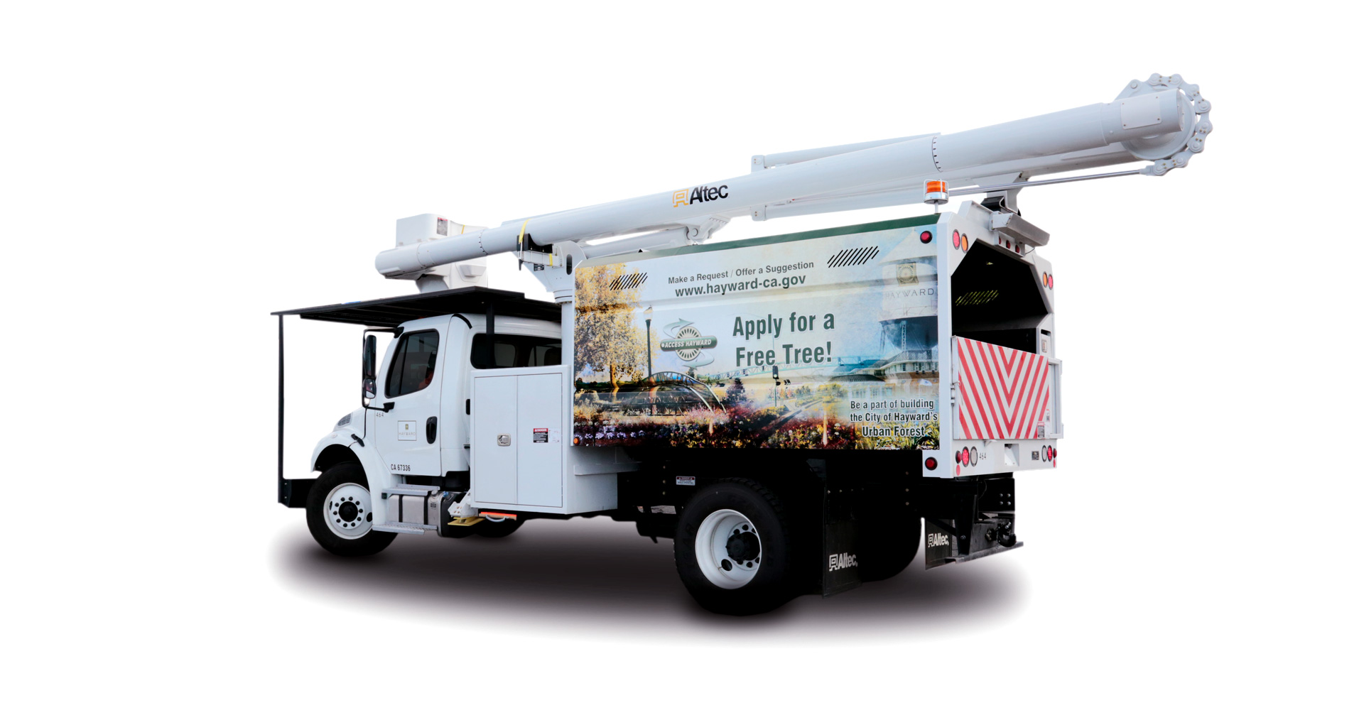 city of hayward street tree truck